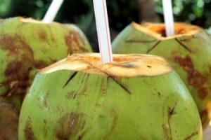Voda z mladého kokosu jako iontový nápoj vhodný pro všechny sportovce